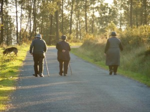Close to Finisterre, I saw these three elders ambling.