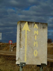 Animo (means many things, including 'keep going')