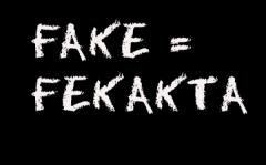 fake = fekakta
