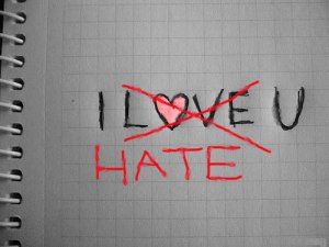 "I Love ""You"", I Hate ""U"""